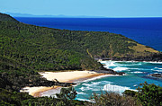 Tropical Waters Metal Prints - Picturesque Australian Beach - Coastline 2 Metal Print by Kaye Menner
