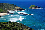 Tropical Waters Metal Prints - Picturesque Australian Beach - Coastline Metal Print by Kaye Menner