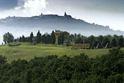 Pastoral Vineyard Photo Prints - Pienza Tuscany Print by Al Hurley