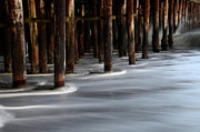 Santa Cruz Pier Framed Prints - Pier Pilings Framed Print by Bob Christopher
