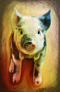 Barbara Orenya Prints - Pig is beautiful Print by Barbara Orenya