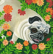 Lori Ziemba Framed Prints - Pig the Pug Framed Print by Lori Ziemba