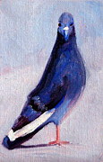 Painted Feathers Paintings - Pigeon Bird Portrait Painting by Nancy Merkle