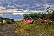 Lobster Traps Photos - Pigeon Cove by Joann Vitali