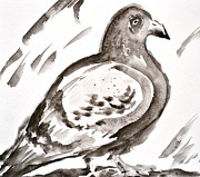 Project Painting Prints - Pigeon I Sumi-e Style Print by Beverley Harper Tinsley