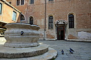 Tourist Destinations Prints - Pigeons in a courtyard by well Print by Sami Sarkis