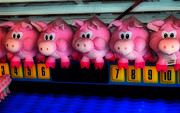 Local Fairs Prints - Piggy Race Print by Skip Willits