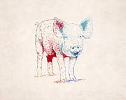 Animal Drawings Posters - Piglet Illustration Drawing Poster by World Art Prints And Designs