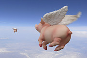 Pig Digital Art - Pigs Fly 2 by Mike McGlothlen
