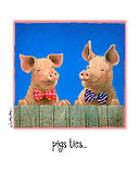 Will Posters - Pigs Ties... Poster by Will Bullas