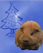 Christmas Card Photo Originals - Pigster Christmas card 1- 2013 by Chris Smith