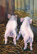 Pig Framed Prints - Pigtails Framed Print by Marsha Elliott