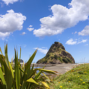Auckland Framed Prints - Piha Beach and Lion Rock New Zealand Framed Print by Colin and Linda McKie
