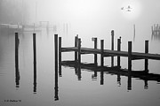 Geese And Moon Prints - Pilings In The Fog Print by Brian Wallace