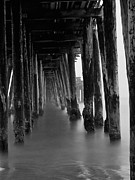 Santa Cruz Pier Framed Prints - Pillars and Fog 2 Framed Print by Paul Topp