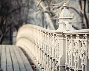 Central Park Photos - Pine Bank Arch by Lisa Russo