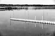 Pine Barrens Prints - Pine Barrens Dock Print by John Rizzuto