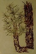 Pine Needles Pastels Prints - Pine Branch Print by Erika Chamberlin