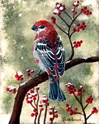 Red And Black Berries Framed Prints - Pine Grosbeak Framed Print by Laura Wilson