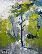 James Gallagher - Pine Tree