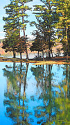 Reflection Of Trees In Lake Prints - Pine Tree Reflections Print by Rebecca Korpita
