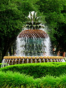 Water Feature Posters - Pineapple Fountain 2 Poster by Randall Weidner