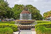 Jean Haynes - Pineapple Fountain in...