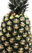 Kitchen Photos Posters - Pineapple Poster by John Rizzuto