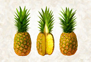 Single Object Painting Posters - Pineapples Poster by Danny Smythe