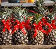 Pineapples Photos - Pineapples Decorated with Red Ribbons by Yali Shi