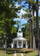 Sunday Drive Photos - Piney Grove Church by Carla Parris