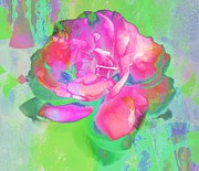 Abstract Roses Posters - Pink Abstract Poster by Cathie Tyler