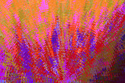 Lively Art - Pink-abstract by Tom Druin