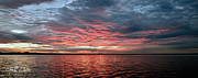 Surises Prints - Pink and Grey at Sea - Sunrise Panorama  Print by Geoff Childs