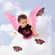 Photography By Mimi Prints - Pink Angel Butterfly Wings Print by MiMi  Photography