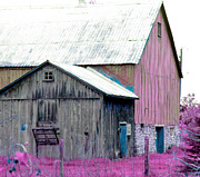 Barn Yard Digital Art Prints - Pink Barn Print Print by Stephan Chagnon Laura Carter