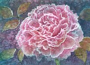 Fineartamerica.com Paintings - Pink Beauty by Barbara Jewell