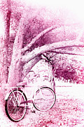 Haze Photo Prints - Pink Bicycle  Print by Stephanie Frey