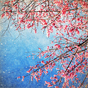 Branch Digital Art Metal Prints - Pink blossom Metal Print by Setsiri Silapasuwanchai