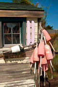 Lee Fortier - Pink Buoys