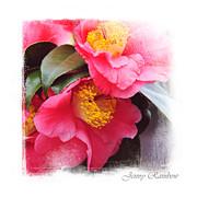 Pink Camellia. Elegant Knickknacks Print by Jenny Rainbow