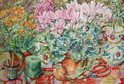 Garden Tools Prints - Pink Cyclamen Print by Barbara Timberman