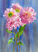 Illustration Art Posters - Pink Dahlias with Blue Gray Background Poster by Sharon Freeman