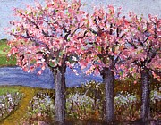 Rita Brown - Pink Dogwood Trees Along...