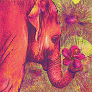 Jane Schnetlage - Pink Elephant