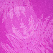Frond Digital Art Prints - Pink Fern Pattern Print by Tim Gainey
