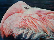 Flamingo Paintings - Pink Flamingo by Glenda Maynard