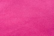 Pink Fleece Print by Tom Gowanlock