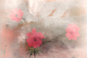 Tom York Images Prints - Pink Floral Abstract Print by Tom York