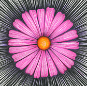 Daisy Drawings Originals - Pink Flower with Orange Center by Nina Kuriloff